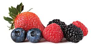 DELEGATE - a maior eficácia contra drosophila em frutos vermelhos